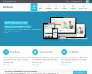 Nictitate_Free_WordPress_Theme