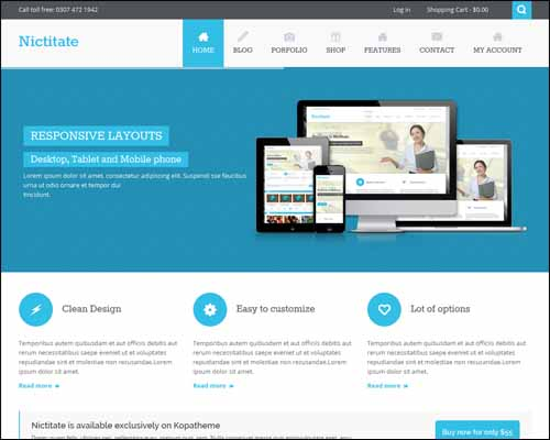 Nictitate_Free_WordPress_Theme