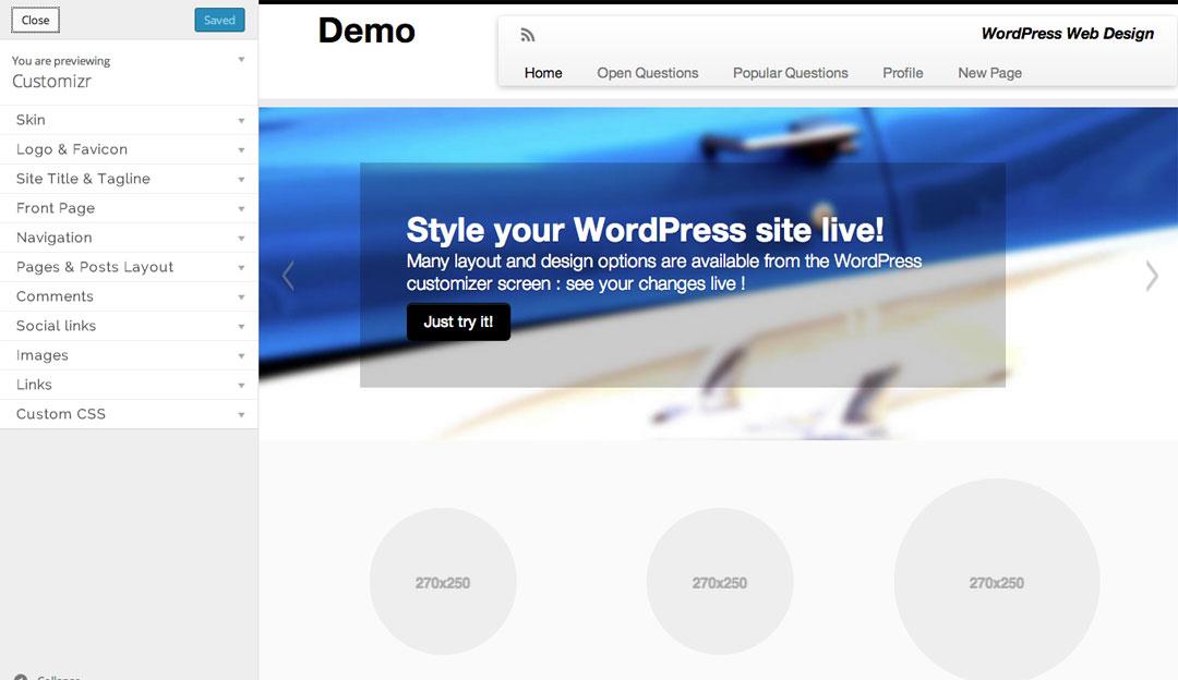 Customizr WordPress responsive theme customization options