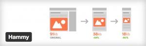 Hammy - WordPress responsive image plugin